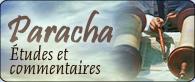 Paracha